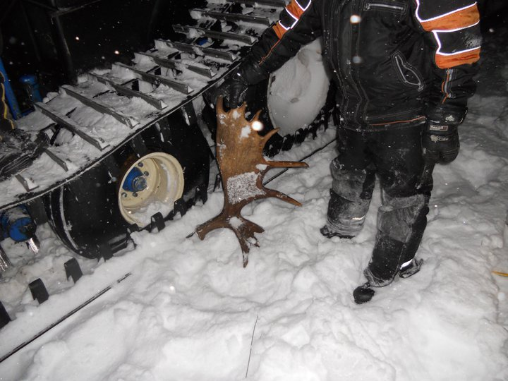 Flat tire from running over a moose horn, we busted 3 tires at the same time, this was under the deep snow we where breaking trail